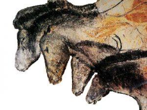 Tiergesichter. Bild: Wikimedia