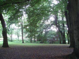 Noch hell im Schlosspark